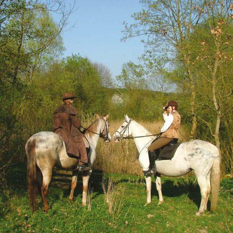 wanderreiten-lueneburger-heide-wendland-elbe