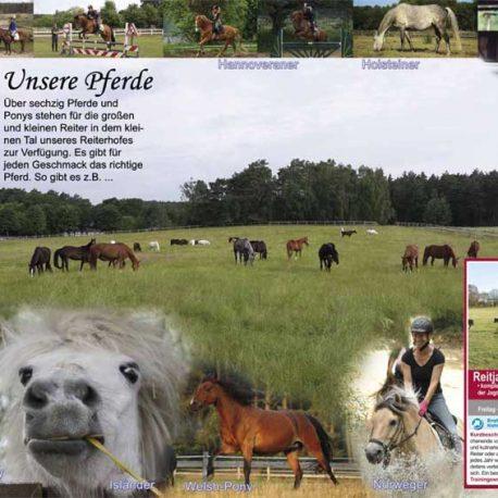 reiterhof-lueneburger-heide-katalog-internet-6