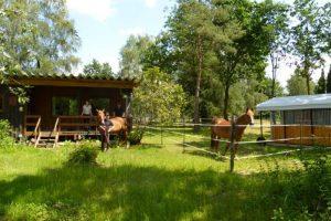 Heidehütte sehr einfach & rustikal